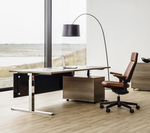 Reiss Elegance Schreibtisch