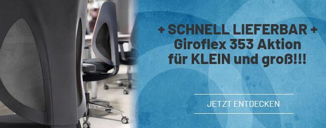 Giroflex 353